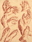 sketches of hands and feet